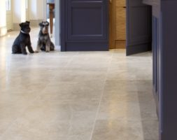 Piccadilly Limestone Honed