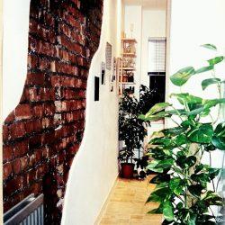 Sian Astley renovation project